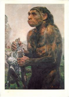 Homo sapiens neanderthalensis 100-40.000  years ago  (Z.Burian-Pravek, Prehistoric World)