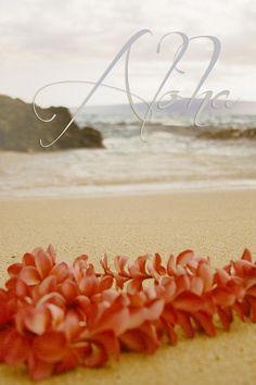 Aloha Photograph by Sharon Maui