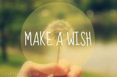 Make a wish quotes q