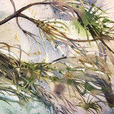 2015 Nancy Murphree Davis nmdART.com Kingfisher, Like Me, Watercolor, Artwork, Painting, Instagram, Pen And Wash, Watercolour, Work Of Art