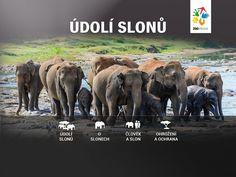 Mobilní aplikace Údolí slonů