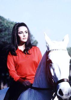 """Elizabeth TAYLOR à cheval lors du tournage du film """"Reflets dans un oeil d'or""""…"""