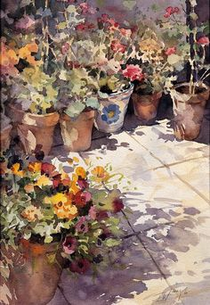 Trevor Waugh - Patio Pots