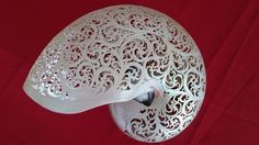 Beautiful Real Hand Carved Sea Shell Art Home Decor | eBay