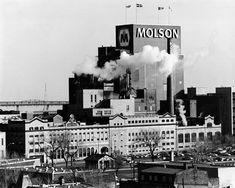 La brasserie Molson en 1995.