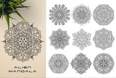 This bundle contains 300 unique vector Black & White mandala designs (some have clean lines and some have an organic look to have a more hand made feel to it) - Geometric Tattoo Sleeve Designs, Sacred Geometry Symbols, Background For Photography, Photography Backgrounds, Relaxation Meditation, Indian Mandala, Paper Ornaments, Canvas Prints, Art Prints