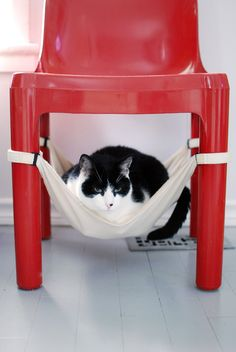 Desire to Inspire Mondays Pets on Furniture with the Cat Crib! #cat #cute #design @Kristen Bosworth