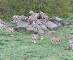 Les Monts de Chabrière (19)