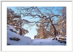 Jenny Rainbow Fine Art Photography Framed Print featuring the photograph Winter In Saxon Switzerland by Jenny Rainbow Framing Photography, Fine Art Photography, Art Prints For Home, How To Make Snow, Time Art, Frame Shop, Wood Print, Art Techniques, Beautiful Landscapes