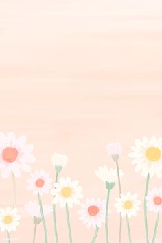 Spring and Easter wallpaper Daisy Wallpaper, Easter Wallpaper, Cute Pastel Wallpaper, Spring Wallpaper, Flower Background Wallpaper, Soft Wallpaper, Flower Phone Wallpaper, Cute Wallpaper Backgrounds, Flower Backgrounds