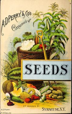 1890 - A. D. Perry & Co.'s twentieth annual catalogue of flower, field and garden seeds, implements and drain tile. Biodiversity Heritage Library