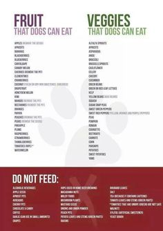 Dog friendly list of fruits and veggies