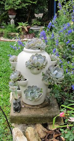 """White strawberry pot with  """"Ghost"""" plants in front of blue larkspur"""