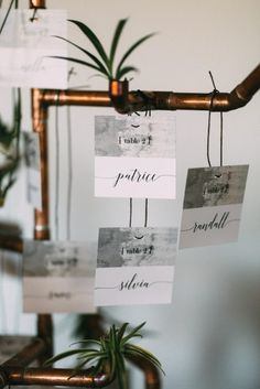 """Stationery was made from recycled paper and vegetable-based ink hung on reused copper pipes made into a """"tree"""" Glass Photography, Ceremony Arch, Local Events, Vintage Tins, Creative Decor, Autumn Inspiration, Wedding Decorations, Wedding Ideas, Cement"""