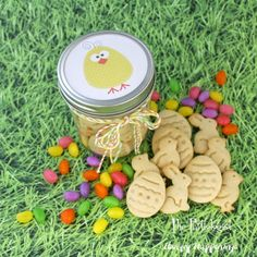 Hungry Happenings: Easter Animal Crackers
