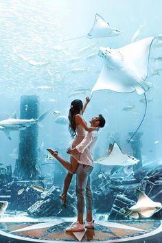 If I could live here. - 📍Dubai, United Arab Emirates - via Destination Voyage, European Destination, Foto Dubai, Best Places To Travel, Places To Visit, Aquarium, Dubai Holidays, Visit Dubai, Rio De Janeiro