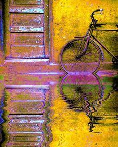 Contraste colorido de cicla y fachada.
