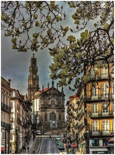 Clérigos church, Oporto