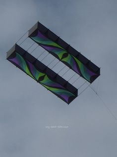 a naturalistic perspective to the kite Per pec ive (pər-spĕk′tĭv) n 1 a a view or vista b a mental view or outlook: it is useful occasionally to look at the past to gain a perspective on the.