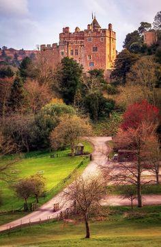 Danijela Živković - Google+ - Dunster Castle, Dunster, Somerset, England