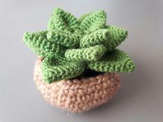 Instrucciones de http://elblogdedmc.blogspot.com.es/2016/04/patron-de-ganchillo-terrario-de-cactus.html