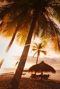 What We Love: An intimate island escape. Anse Chastanet Resort (St. Lucia) - Jetsetter