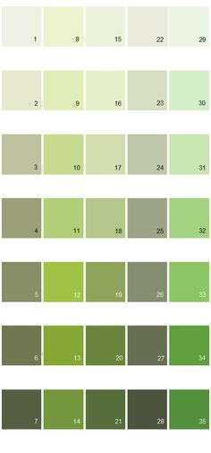 Behr Paint Green Colorfully Behr  Color Vocabulary Lesson 1  Paint  Pinterest