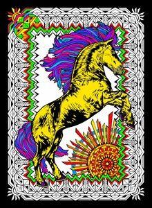 stallion 11x15 velvet poster