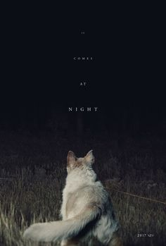 It Comes at Night (2017)  directed by: Trey Edward Shults  starring: Joel Edgerton, Riley Keough, Christopher Abbott, Carmen Ejogo