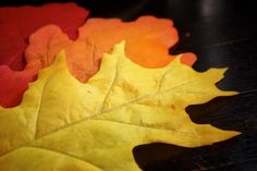 paper and felt leaves for decorating the table #partycrafters