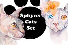 Posted by @newkoko2020 Watercolor Sphynx Cats Set by Elizaveta on @creativemarket