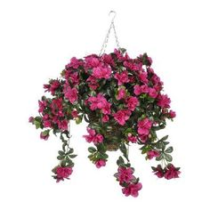 House of Silk Flowers Artificial Azalea Hanging Plant in Square Basket Flower Color: Fuchsia