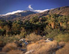 Hike Palm Springs