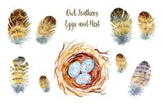 Watercolor clipart owl feathers, eggs and nest digital clipart printable instant download scrapbook watercolor cards invitation by CornerCroft on Etsy