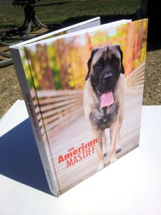 The American Mastiff Book - first of its kind!  My boy is included in this book, too! :)