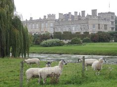 England Travel Inspiration - The perfect day castle hunting in Northamptonshire, England visiting Rockingham Castle and Deene Park, two gorgeous hidden gems which are totally worth a day trip from London. If you love castles then you must add these to your England bucket list as you won't be disappointed plus I share my gluten free food finds as well! Click the link to read more about these amazing castles in England.