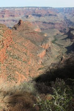 Grand Canyon National Park - Bright Angel Trail. This photo gives a good overview of the trail. The route switchbacks down impossible looking cliffs, past the One-And-A-Half Mile Resthouse and the Three Mile Resthouse (no water in winter), then down Jacob's Ladder - more switchbacks through limestone cliffs - to reach the valley floor and the green oasis you can see on the pic which is Indian Garden. A further level hike across the plateau takes you to Plateau Point at the end of the valley.