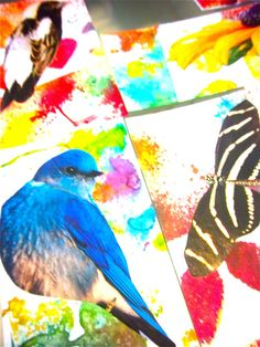Summer Art Collages | Bonita Rose, Life.Love.Color.Art a life unrehearsed