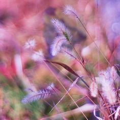 prettylittleflower:  I am getting bored.. (by Liya Fendi)