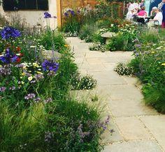 @ the Tatton Park Flower Show 2016