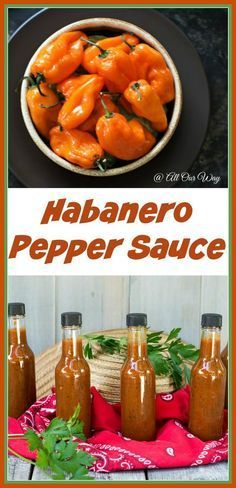 Habanero Pepper Sauce is deliciously hot with the heat tempered by canned peaches. The garlic and spices finish the sauce with deep notes of flavor. Habanero Recipes, Habanero Sauce, Hot Sauce Recipes, Jalapeno Hot Sauce Recipe, Hot Pepper Recipes, Chili Sauce Recipe Canning, Habenero Salsa, Pesto, Tatoo