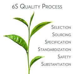 High Standards, Did You Know, The Selection, Plant Leaves, Health, Product Development, Safety, Stage, Key