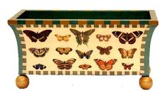 annie modica butterfly - Google Search
