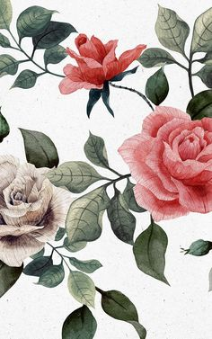 White rose wallpaper vintage floral wallpapers 44 ideas for 2019 Botanical Wallpaper, Flower Wallpaper, Mobile Wallpaper, Iphone Wallpaper, Wallpaper Murals, Vintage Floral Wallpapers, Inspirational Wallpapers, Floral Bouquets, Vintage Flowers