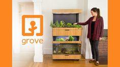 Der Gemüsegarten für das Wohnzimmer ist da! Er besteht aus einem geschlossenen Ökosystem mit Pflanze...