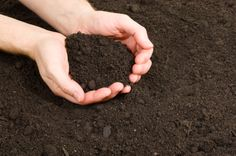 Odrick Natural Earth's Premium Grade Top Soil is finely screened and enhanced with natural compost.  Perfect for your lawn or garden. Sold at Ondrick Natural Earth, Chicopee, MA