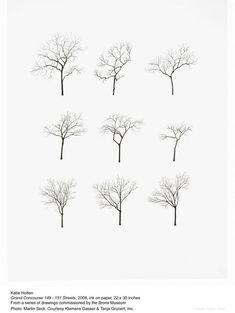 Encore des arbres silouettes: