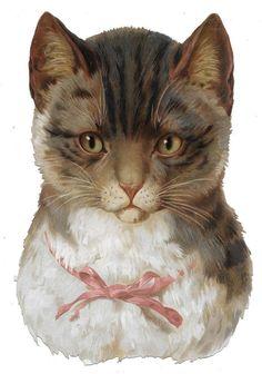 Victorian Die Cut Scrap Beautiful Large Cat ca. 1880s-90s: