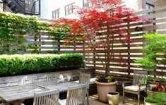 mur végétal - brise-vue de plantes grimpantes pour balcon et terrasse
