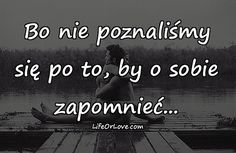 Znalezione obrazy dla zapytania cytat o miłości Sad Quotes, Daily Quotes, Class Quotes, Happy Photos, Romantic Quotes, Young Living Essential Oils, In My Feelings, Love Life, Motto